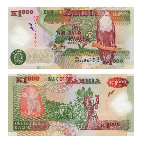 Замбия полимерная банкнота 1000 квача 2009 года