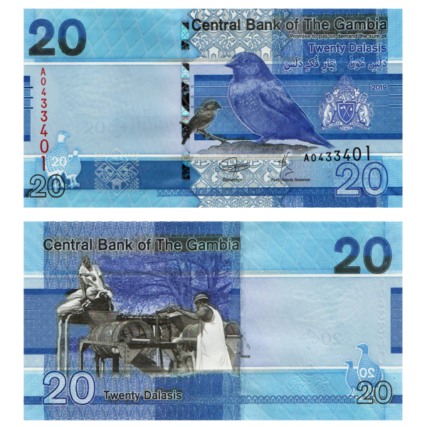 Гамбия банкнота 20 даласи 2019 года